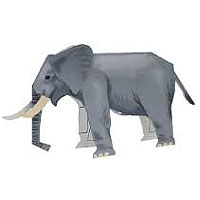 Модели и звери из бумаги Африканский слон