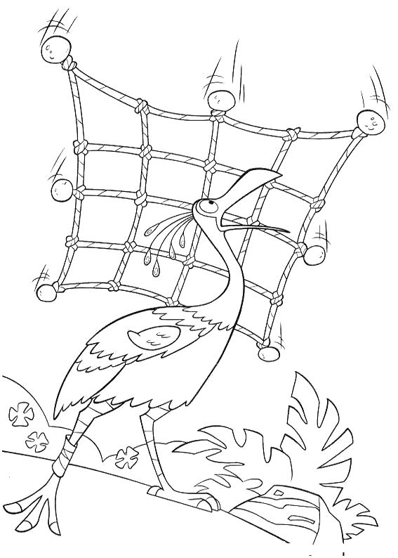 Раскраски птицы большие