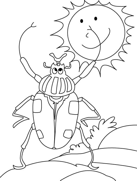 Жучок здоровается с солнышком Раскраски Раскраски жуки