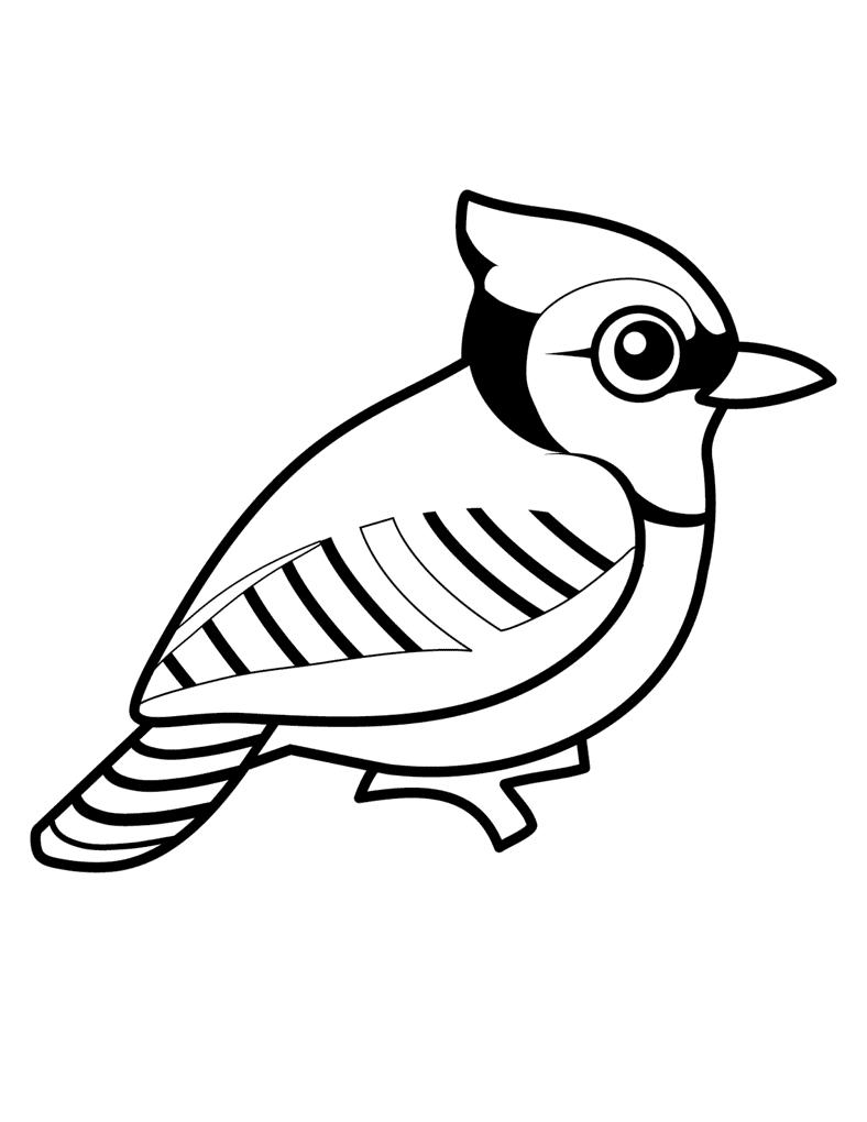 Распечатать попугай раскраски