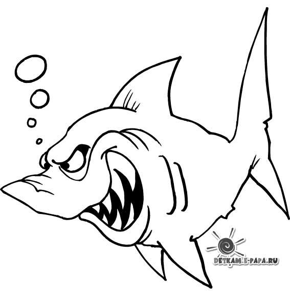 Акула Раскраски Раскраски рыбы