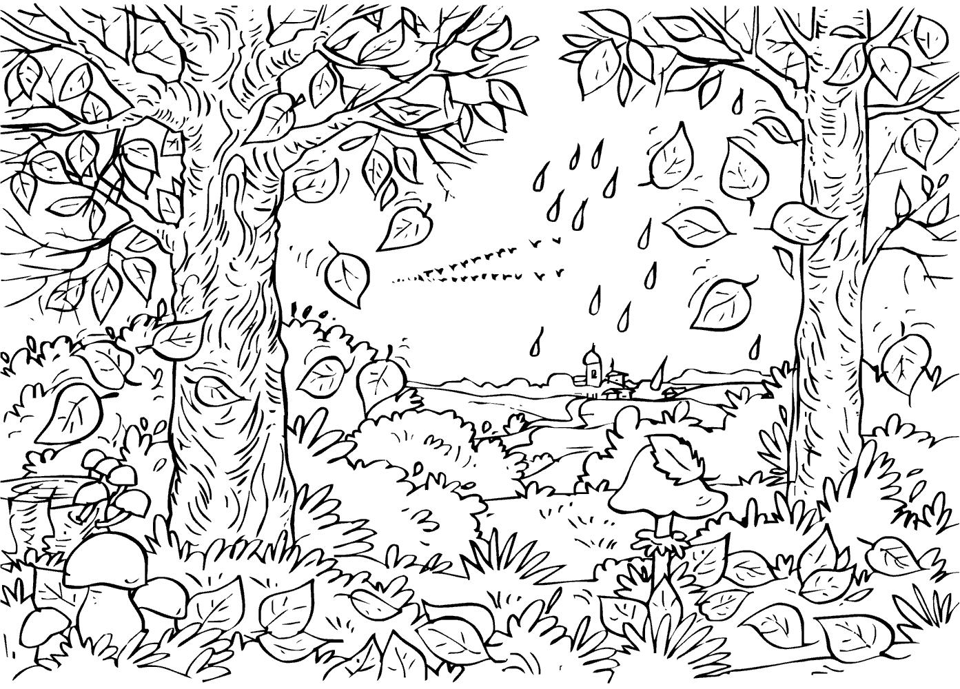 Осенний лес Раскраски Раскраски осень
