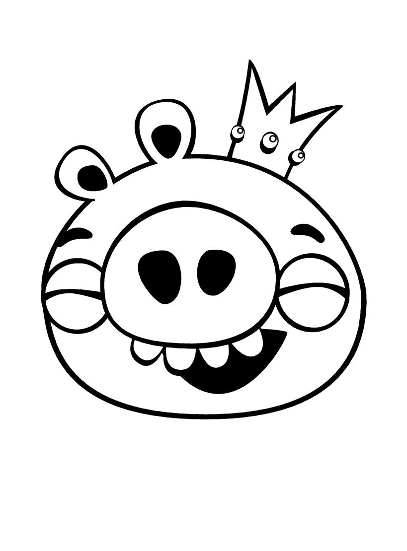 раскраски для детей Angry Birds