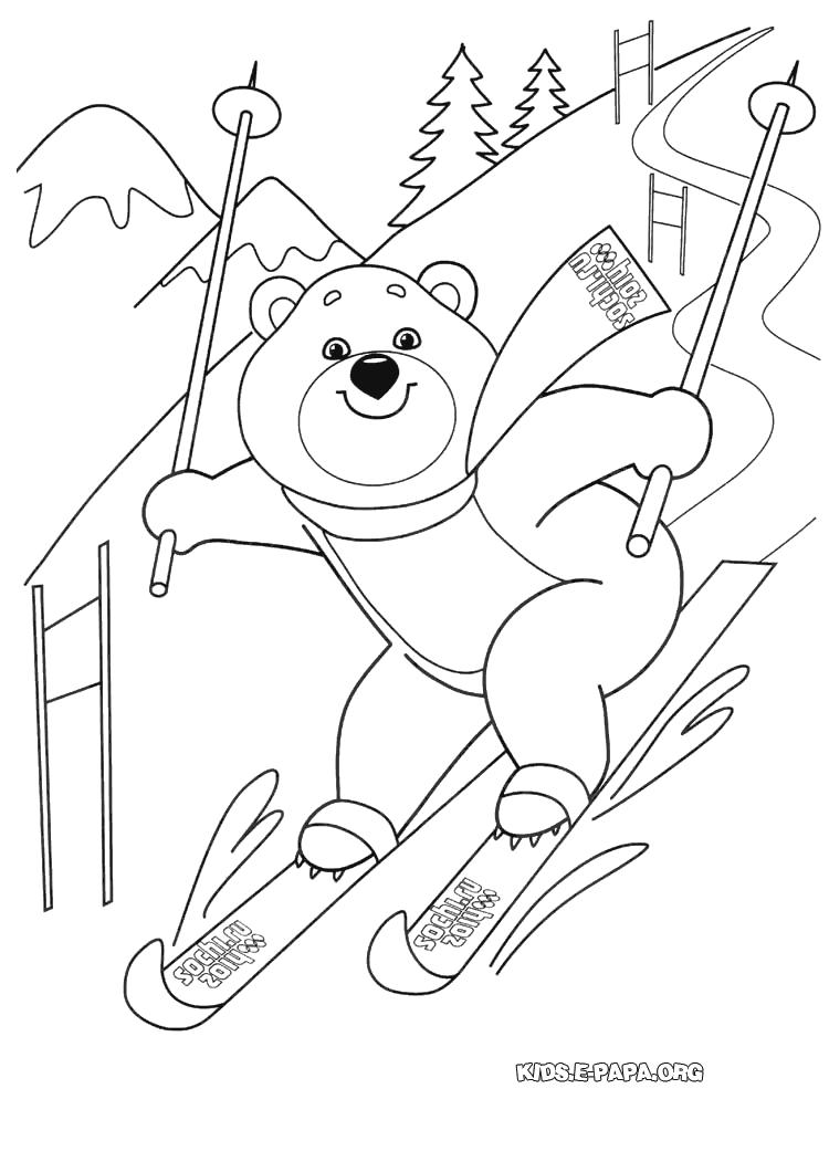 Раскраска олимпиада