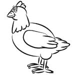 Как обрисовать птиц