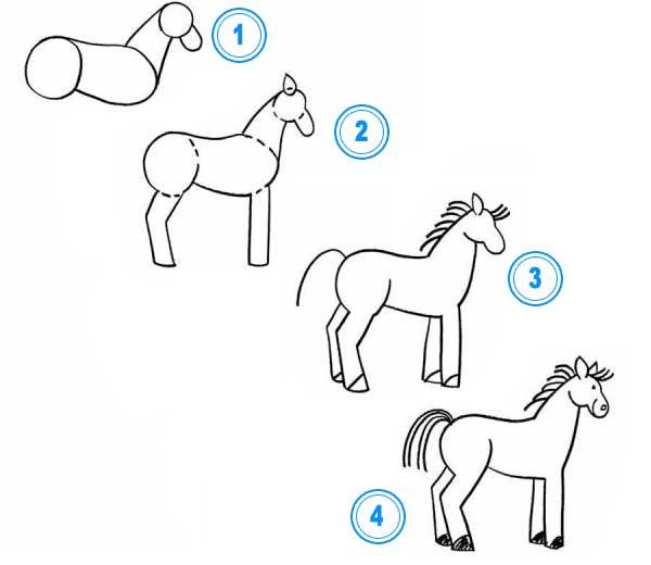 Но если рисовать лошадь поэтапно то вполне можно ее правильно нарисовать даже.