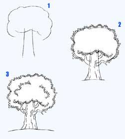 Как нарисовать дерево.